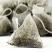 Piramida ceai verde japonez Sencha